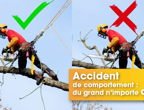 Les accidents de comportement, c'est du grand n'importe quoi !