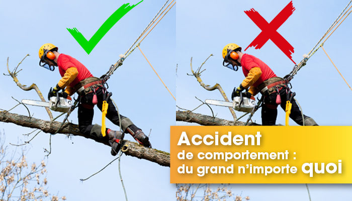 accident de comportement du grand n'importe quoi