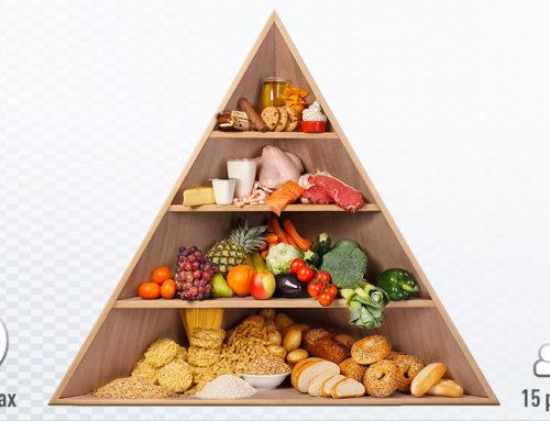 Atelier : jeu de la pyramide alimentaire