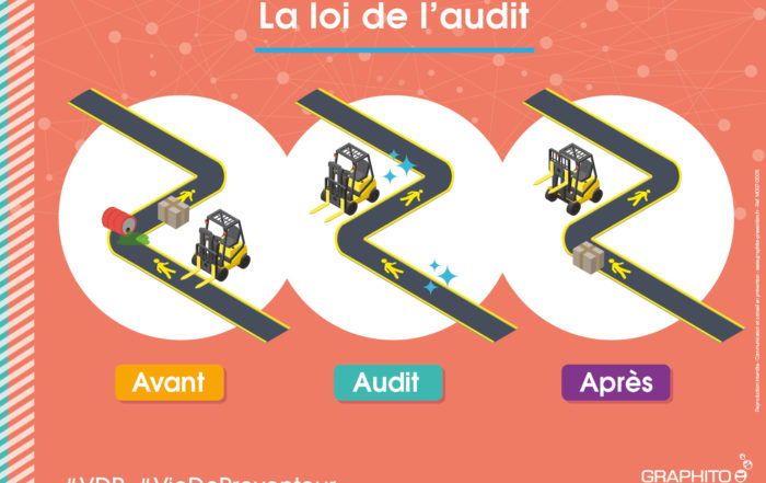 la loi de l'audit